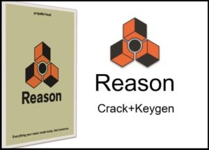 Reason 11.3.6 Crack + Activation Code Free Download {2021}